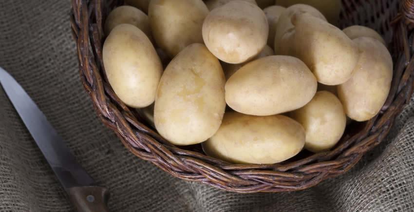 Kartoffeln lagern: So halten Sie lange frisch ohne zu keimen